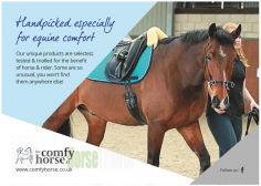 The Comfy Horse Co
